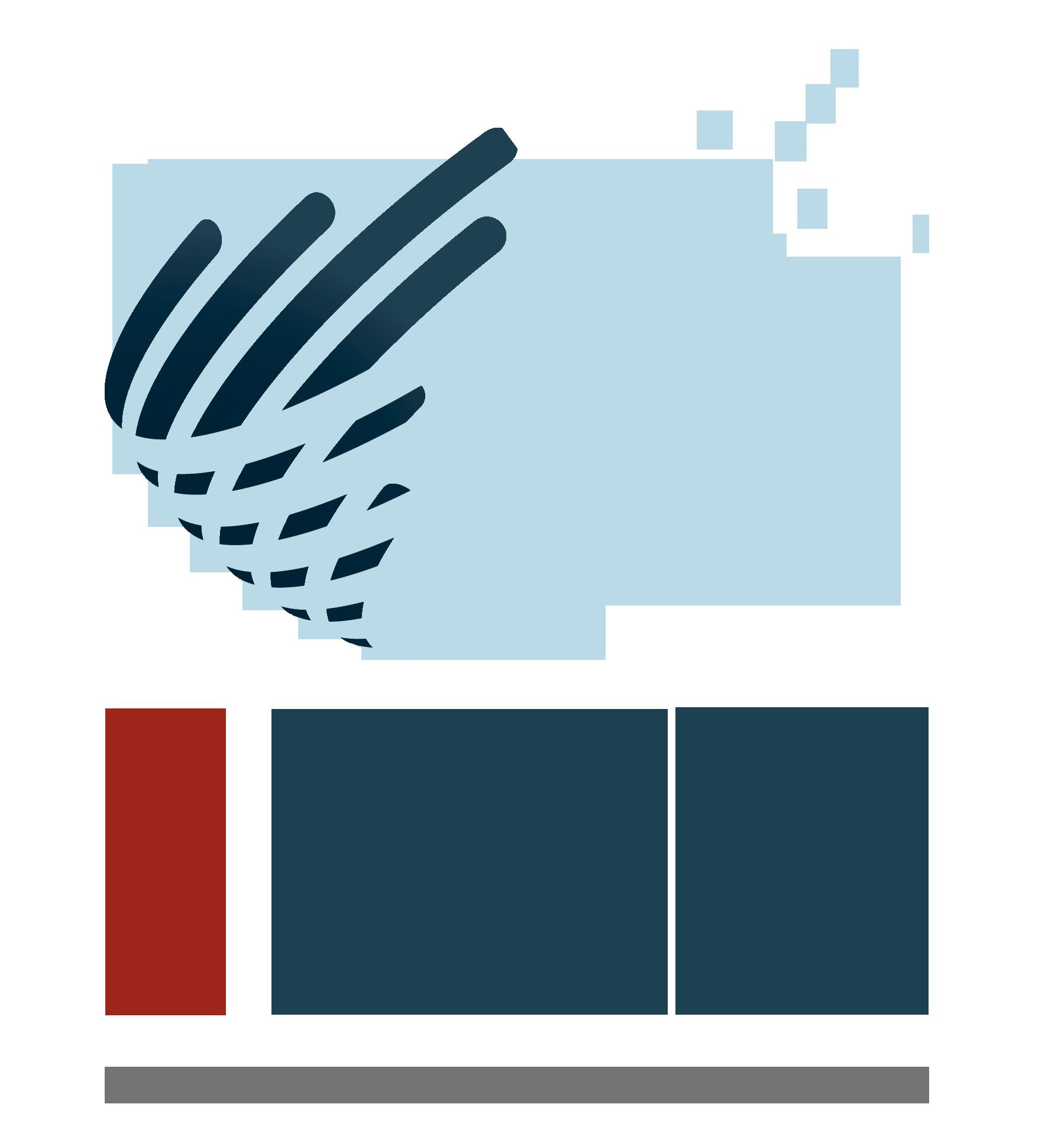 Instituto iEFC